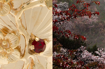 Colección Sakura SS18